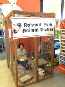 Adoption Outreach @ Petco-Petaluma | Petaluma | California | United States