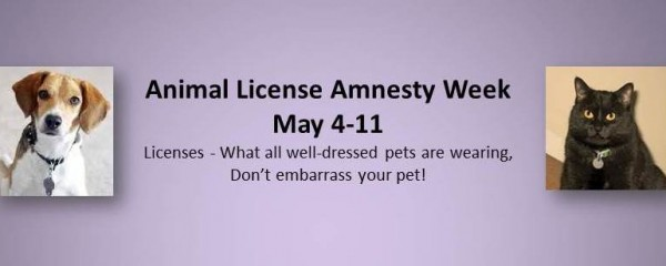 Animal License Amnesty Week – May 4-11